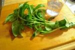 Fresh, vibrant basil!