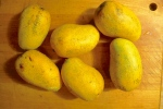 The mangoes should be very ripe or verging on overripe.
