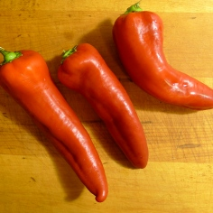 What to do with field peppers ...